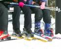 generic skiers