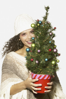 Donate Your Live Christmas Tree To NSEA!
