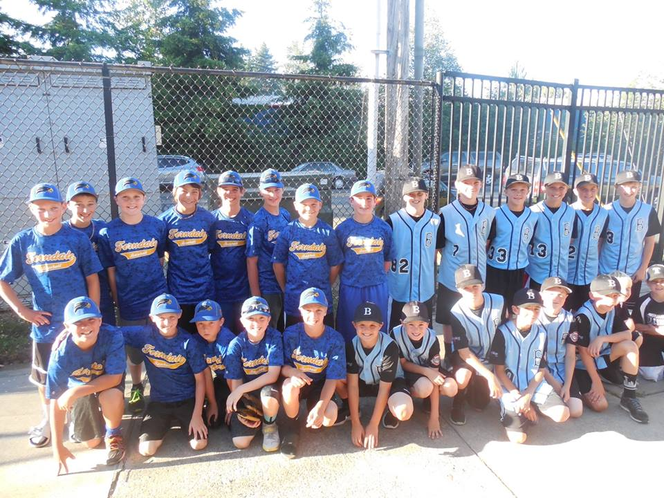 Three county teams in action at 11U state tourney
