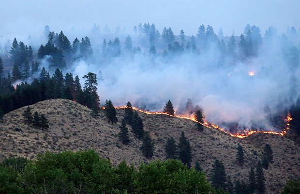 Firefighters gain better control of historic wildfire