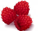 raspberry graphic